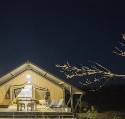 Luxury Tent - Nuova esperienza 2019!